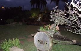 Jardim com Cascata ao Fundo
