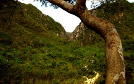 Serra do Cipó